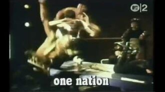 The Beatnigs - Television
