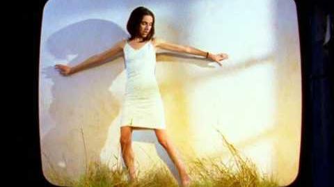John Parish, PJ Harvey - That Was My Veil