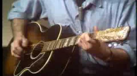 John Fahey plays