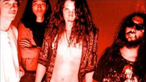 Soundgarden - Thank You (Falettinme Be Mice Elf Agin) (Peel Session)