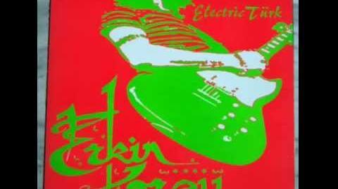 John Peel's Erkin Koray - Köprüden Geçti Gelin