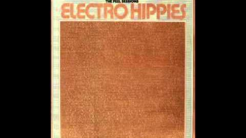 Electro Hippies - The Peel Sessions 12 inch (1987)