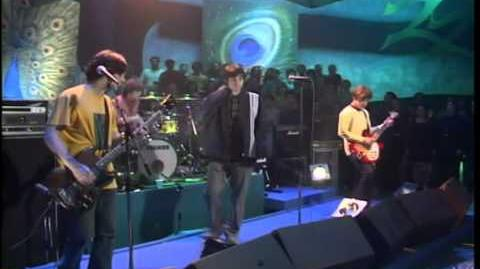 The Bluetones Slight Return (Live Video)