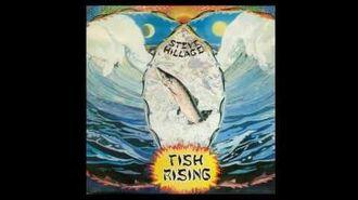 Steve Hillage - Salmon song - 1975