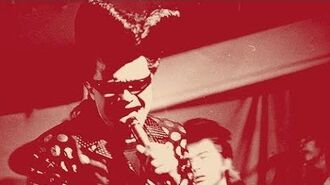 THE REVILLOS John Peel 10th March 1980