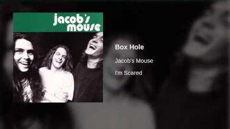 Jacob's Mouse - Box Hole