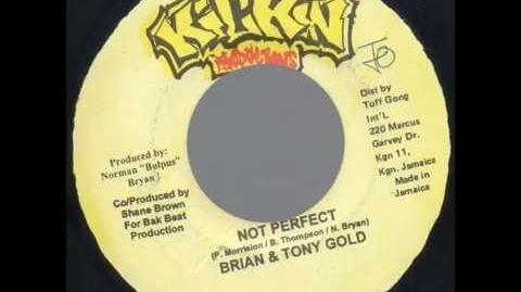 John Peel's Brian and Tony Gold - Not Perfect (Original Version)