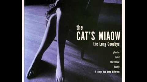 The Cat's Miaow - Phoebe