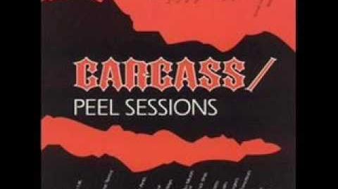 Carcass- Cadaveric Incubator Of Endo Parasites (The Peel Sessions)