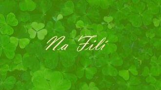 Irish Tradition - Beal Atha hAmhnais (Na Fili)