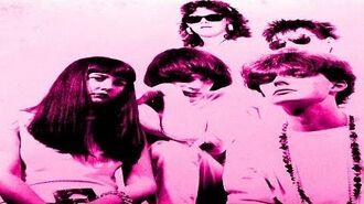 The Pooh Sticks - Peel Session 1988