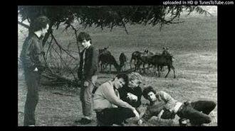 The Shrubs - John Peel Session -1 22nd July 1986