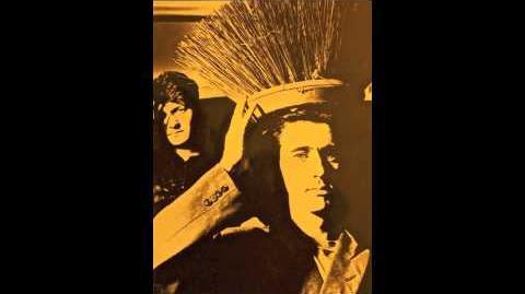 IT'S IMMATERIAL John Peel 12th November 1983