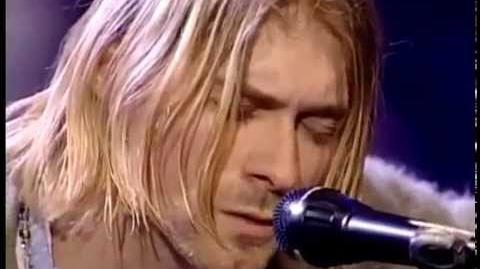 Nirvana - Where did you sleep last night - Unplugged in new york --Best Sound Quality--