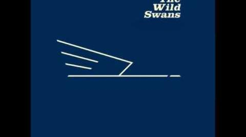 The Wild Swans-Thirst (Peel Session 1st May, 1982)