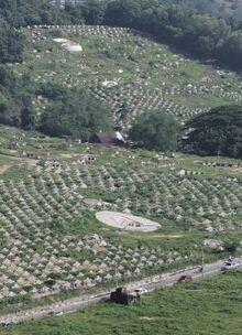 Mount Erskine cemetery, Penang