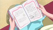 Diary f