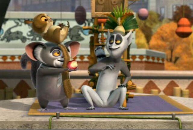 File:Lemur2.jpg