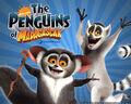 Madagascar-Wallpaper--lemurs.jpg