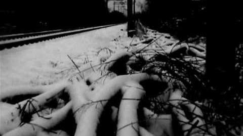 "Tom Waits reading ""Nirvana"", a poem by Charles Bukowski"