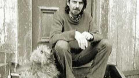 5 Poems by Robert Creeley