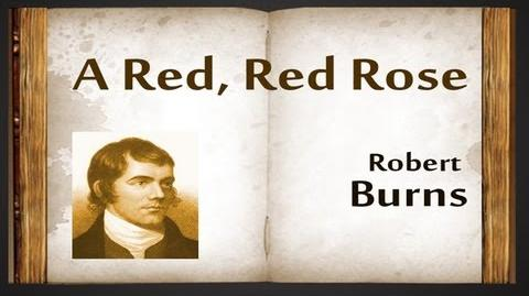 A Red, Red Rose by Robert Burns - Poetry Reading