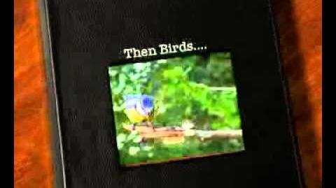 First Fire, Then Birds by HL Hix. Book Video