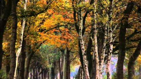 Poem in October read by Dylan Thomas