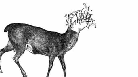 Inverting the Deer by Gary Barwin
