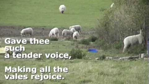 William Blake poem 'The Lamb' English Language Poetry