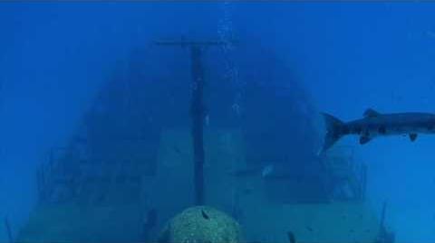 The Shipwreck 1