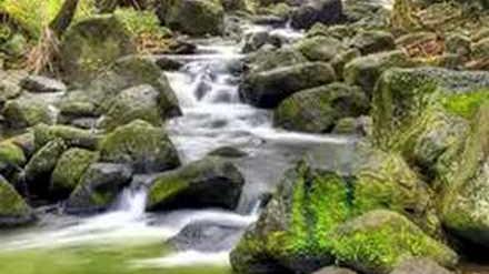 Henry Vaughan - THE WATERFALL' poem