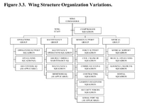 Wing-structure-organization