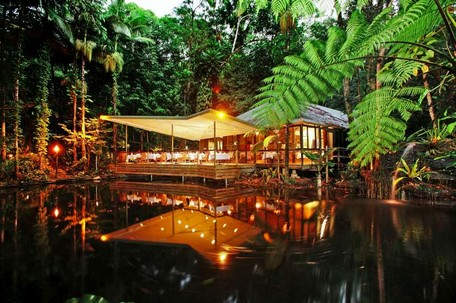 Daintree-ecolodge-high-res048-800