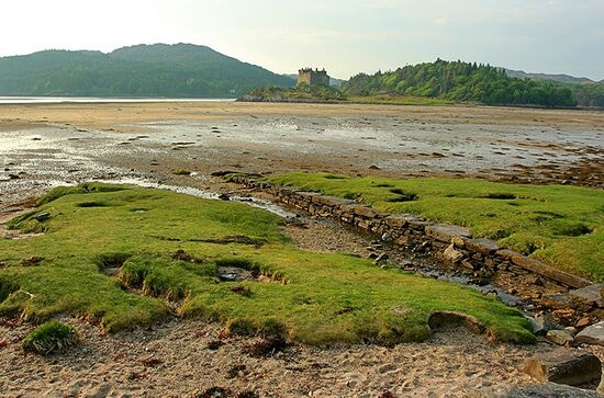 Beach with Castle Tioram in background