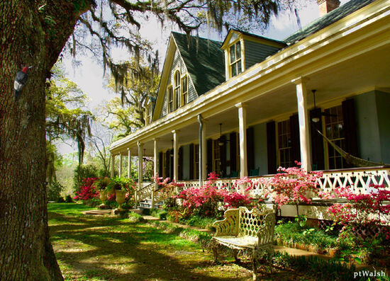 Beautiful plantation house front porch