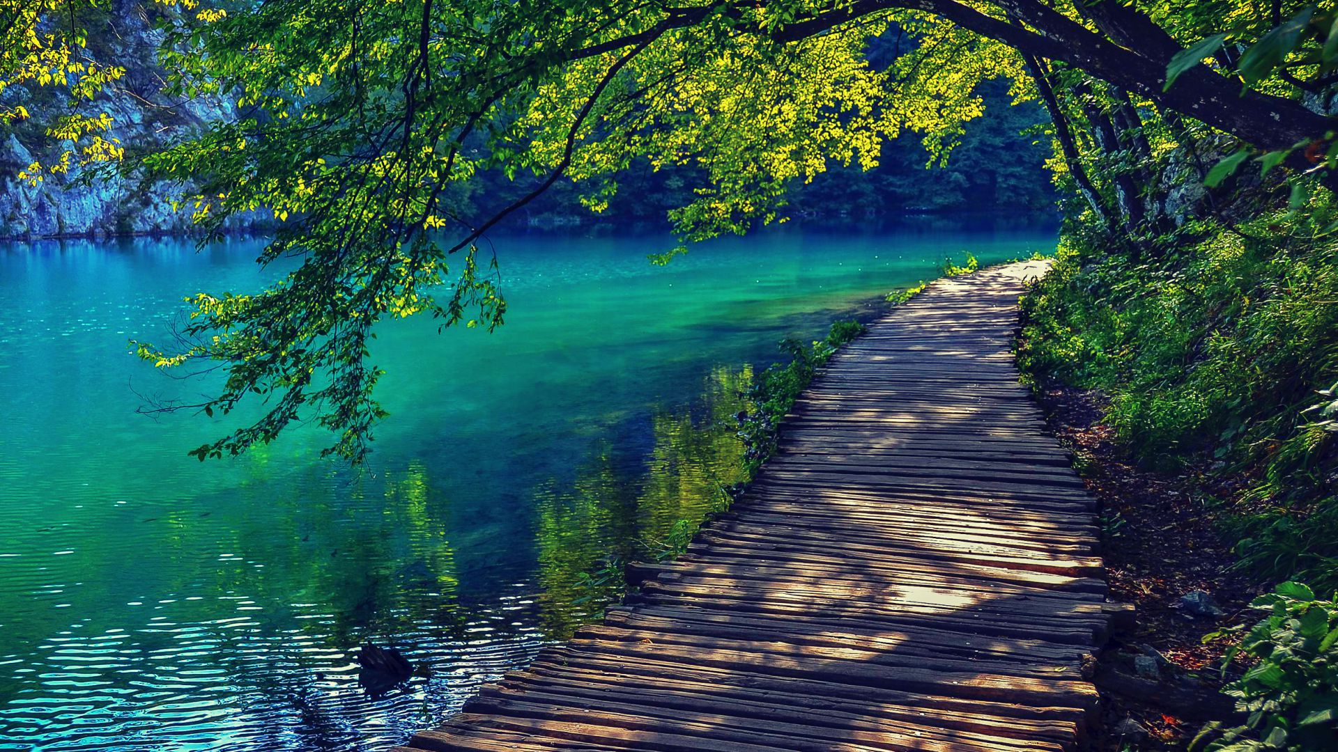 1080p Nature Wallpaper Of Slovenia Lake Bled Images