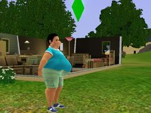 Adil Ranjan Big Fat Belly-1481480501