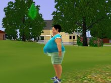 Adil Ranjan Big Fat Belly-1481480530