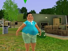 Adil Ranjan Big Fat Belly-1481480442