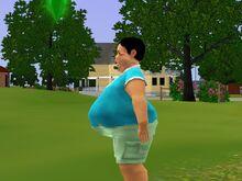 Adil Ranjan Big Fat Belly-1481480592