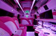 PinkHummer03