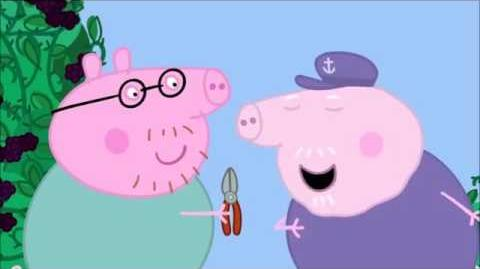 Daddy Pig rescues Mummy Pig