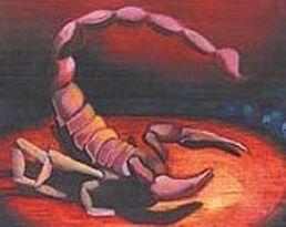 Rhode Evans (The Unrelenting Frozen Seas)   Percy Jackson Fanfiction