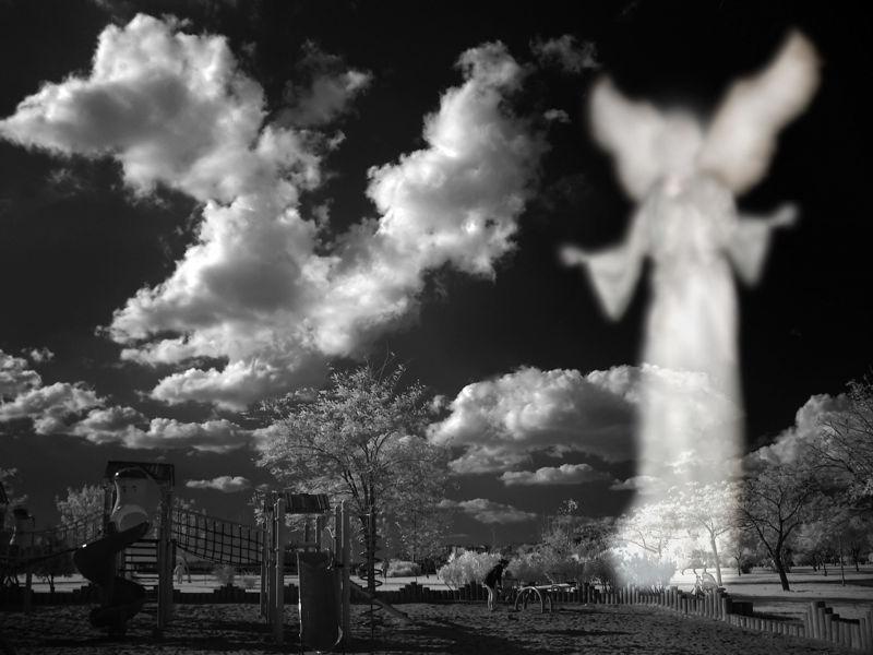Angels of Paradise | Percy Jackson Fanfiction Wiki | FANDOM powered