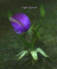 Ogre Sprout