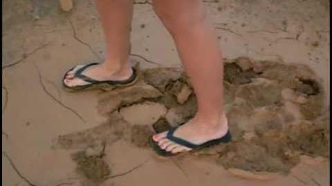 Barbi's Sticky Muddy Feet