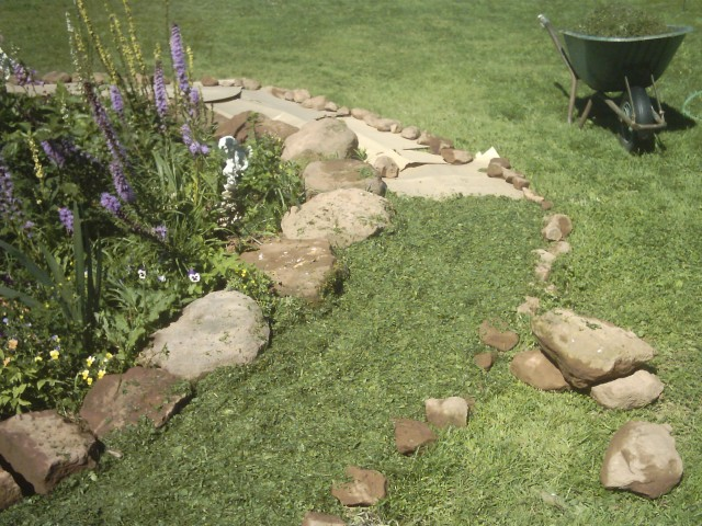 File:Path covered with clippings.jpg