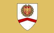 Bielefeld flag 2