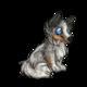 Child5Shetland Sheepdog